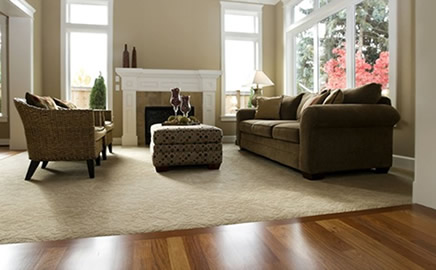 carpet and flooring. and services which will progressively enable a relevant, self-financing organisation to attract the majority of qualified, highly skilled carpet flooring